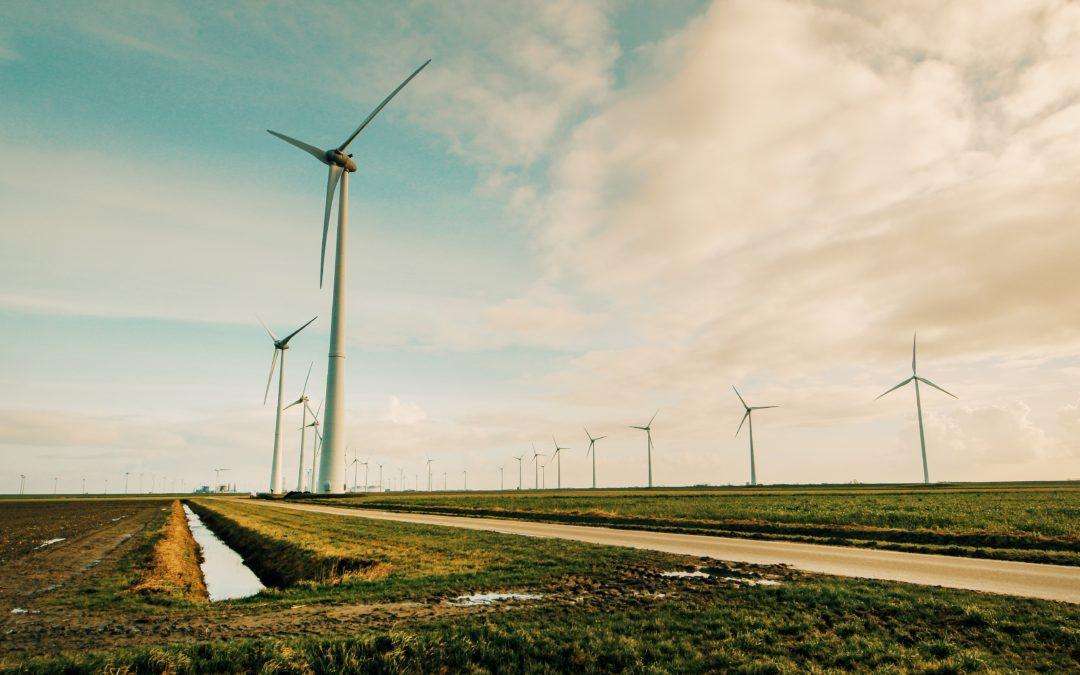 Statement der Jahresversammlung des MiLaNs zum Ausbau der Windkraft